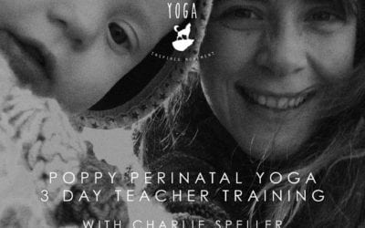 GUEST BLOG: The sh*t they don't tell you…. BEFORE you get pregnant!  ~Charlie Speller