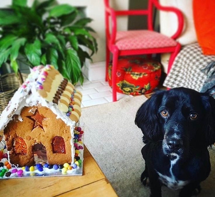 Creativity & Philosophy: Lessons From A House Of Gingerbread