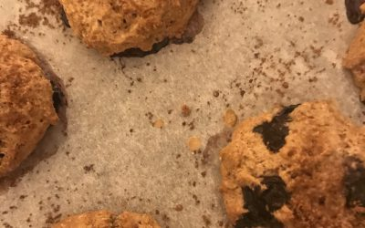 Stories From a Wild Kitchen: The Conflab Scones